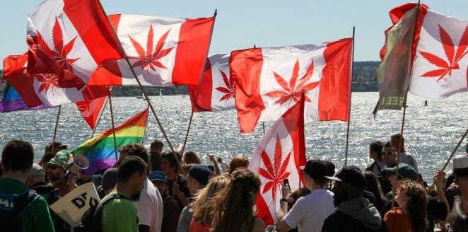 canadian-cannabis-corp